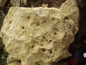 pietra-del-finale-finalbythomas-3